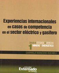 Experiencias internacionales en casos de competencia en el sector eléctrico y gasífero (2011)