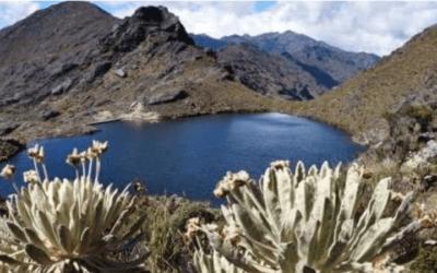 Nueva regulación sobre la gestión integral de los páramos en Colombia:   Ley 1930 de 2018