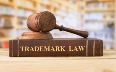 Trademark Infringement in the Digital Ecosystem
